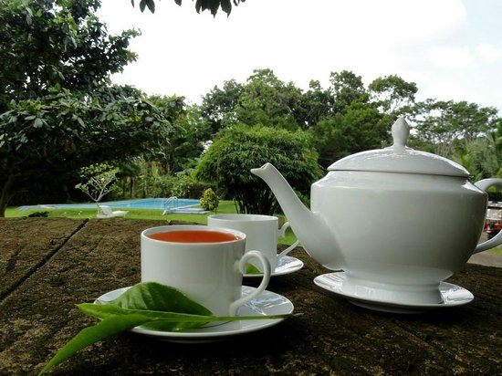 Shanthi Lanka Ayurveda Resort: Tea time in the Garden