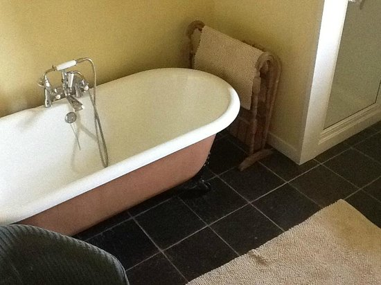 Tyddyn Iolyn Farmhouse: good hot shower + victorian bath - and double sinks too so you can wash in tandem