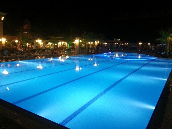 Dizalya Palm Garden Hotel: View from pool area