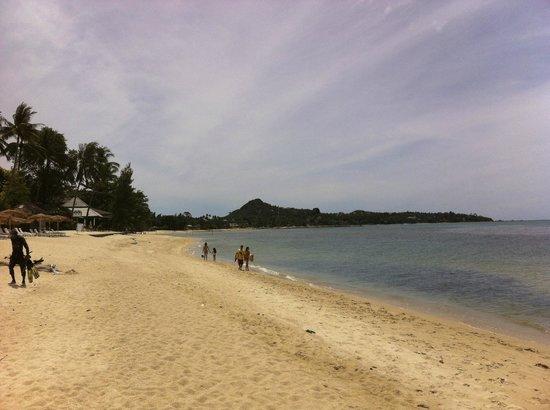 Cinnamon Beach Villas: Lamai beach