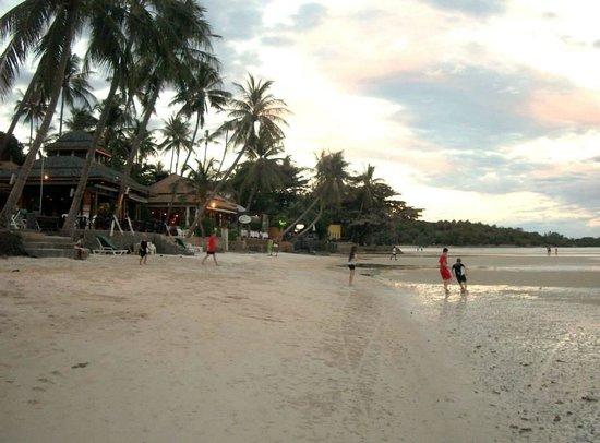 Chaba Cabana Beach Resort: beach front outside cabana