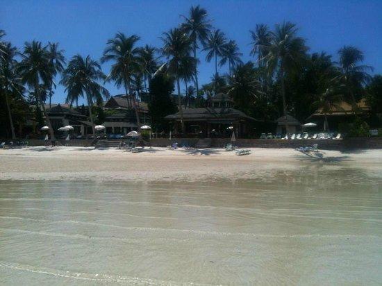 Chaba Cabana Beach Resort: view of hotel from beach