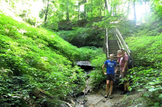 Shades State Park: Many stairs on trails