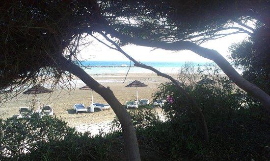 Aldiana Cyprus: Lieblingsplatz zwischen Wiese und Strand