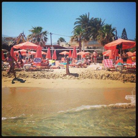 High Beach Hotel: beach