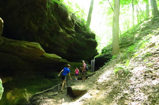 Shades State Park: Trail 4
