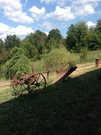 Agriturismo Cavallo Biondo