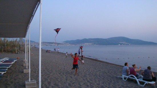 Halic Park Dikili: plaj geniş ve rahattı