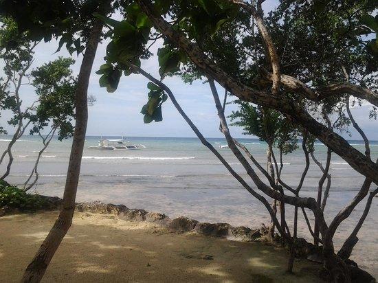 Bluewater Panglao Beach Resort: view of the sea
