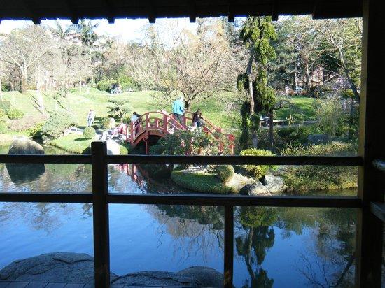 Jardin Japonais : ponte no jardim japones