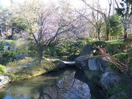 Jardin Japonais : jardim japones