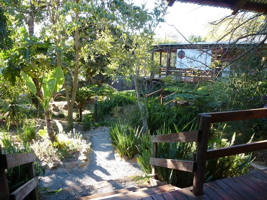Lidwala Backpacker Lodge: Gardens