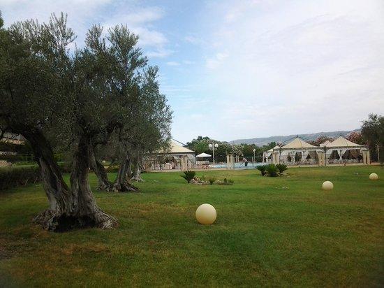 Hotel degli Ulivi: per un eccellente relax
