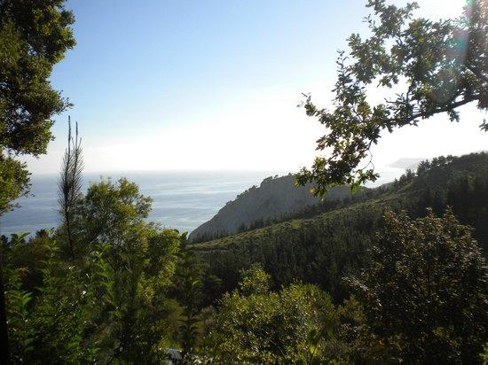 Camping Itxaspe: vue du bungalow