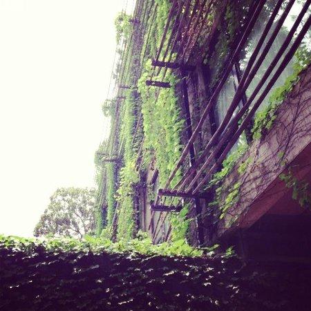 URBN Hotel Shanghai: Eco friendly