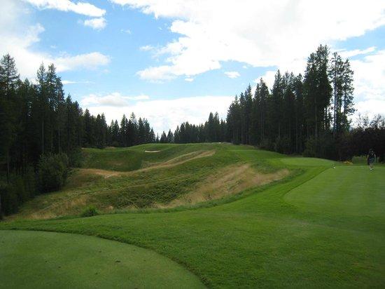 Trickle Creek Golf Course: #10 need a big tee shot