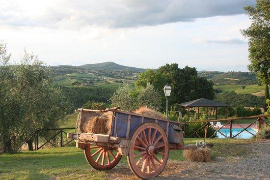 Agriturismo Tenuta di Corbara: Dalla sistemazione principale panorama