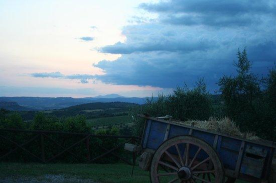 Agriturismo Tenuta di Corbara: Panorama