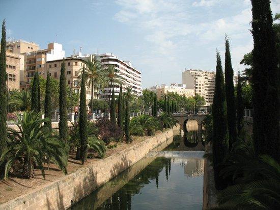 Hotel Palladium: Paseo Mallorca,la strada dell'hotel