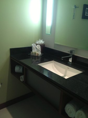 Holiday Inn San Jose-Escazu: Great bathroom