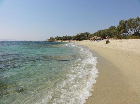 Summerland  Holiday's Resort: la plage