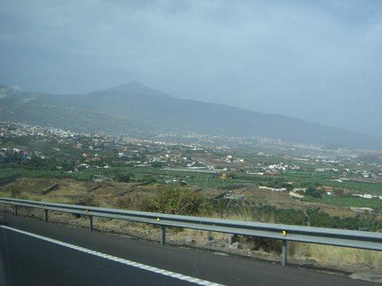 Orotava Tal - Bild von Orotava Valley, Puerto de la Cruz - TripAdvisor