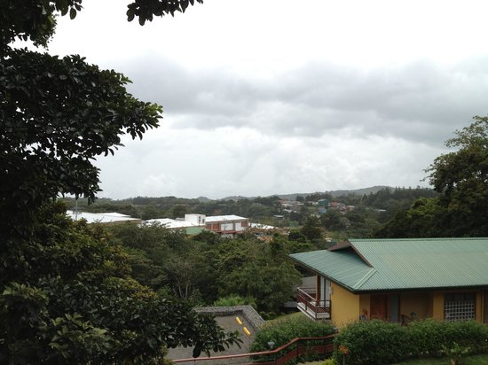 Pacific Trade Winds Day Tours: Our view from Hotel Ficus in Monteverde