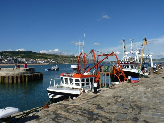 Cleveland Bed & Breakfast: Working boats in the harbour