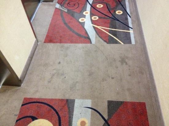 La Quinta Inn & Suites Denton - University Drive : carpets are soiled