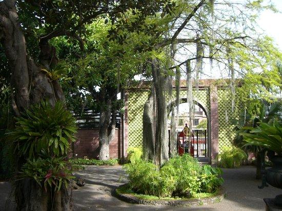 Jardín Botanico - Picture of Botanical Gardens (Jardin Botanico), Puerto de l...