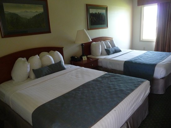 BEST WESTERN Buffalo Ridge Inn: la Chambre