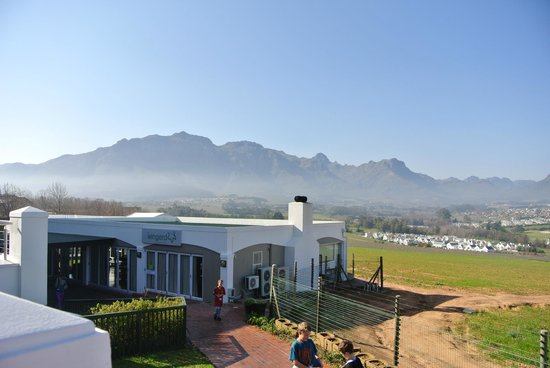 Protea Hotel by Marriott Stellenbosch: View from the breakfast area