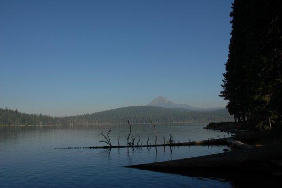 Lake of the Woods Resort : The Lake