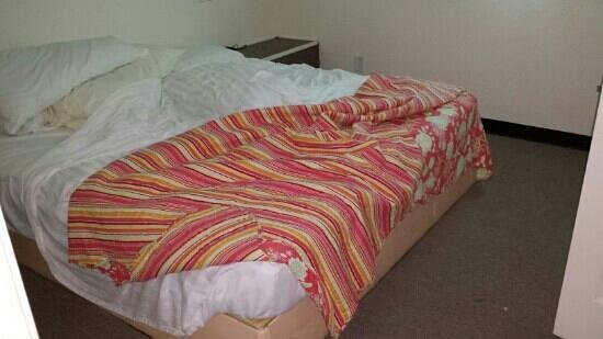 The Breeze Hotel and RV Park: bed in bedroom. just a hard matress on a frame.