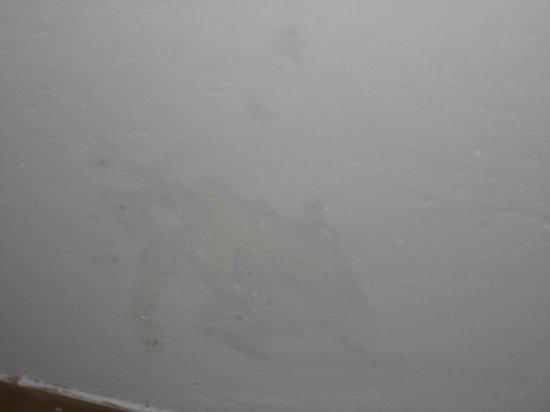 Hotel Elsi : umidita proveniente dalla doccia