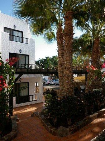 Bahia Calma Bungalows: bungalows