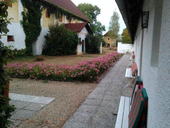 Skorianzhof : il cortile fiorito