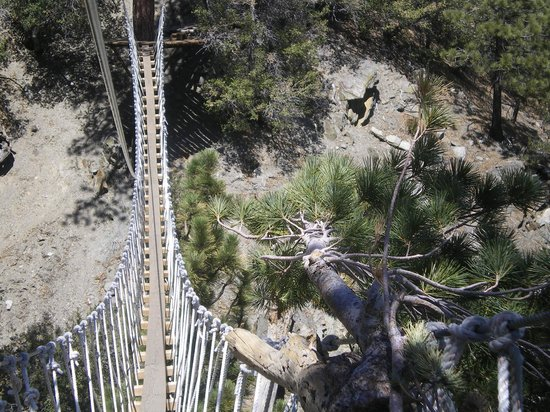 Big Pines Zipline Tours: What a view from the bridge
