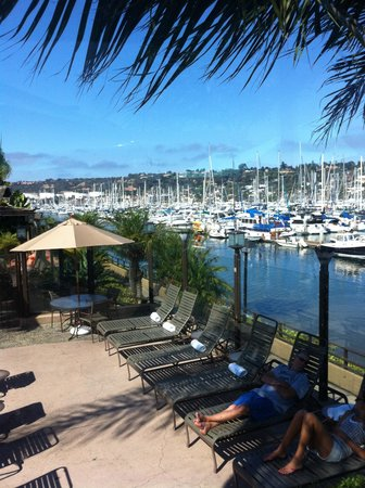BEST WESTERN PLUS Island Palms Hotel & Marina: View from restaurant