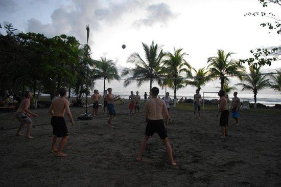 Beach Break Resort: terrain de volley ball