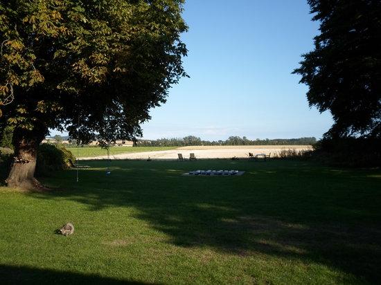 B&B TiendeGaarden: the surrounding fields