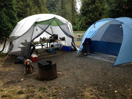 Fort Camping: Our site setup.. and my furry child :)