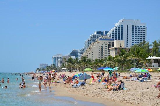 Las Olas Guesthouse @15th Avenue: FortLauderdale beach (Praia em FortLauderdale, 5 min de carro do Hotel)