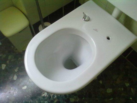 Divina B&B : Totale assenza della tavoletta nel bagno in comune