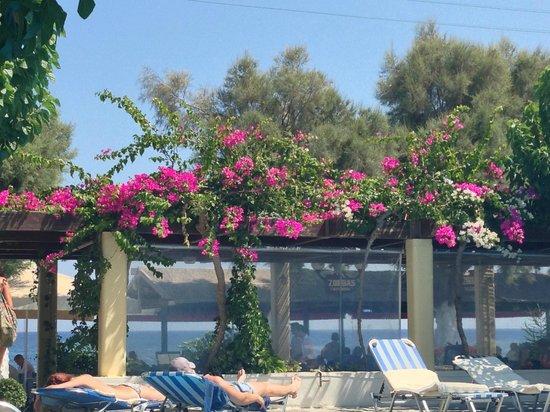 RK Beach Hotel: pool