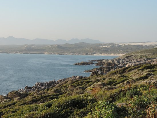 Grootbos Private Nature Reserve: view from lodge