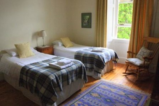 Newbold House: A lovely twin room that overlooks the woodlands at the back of the house