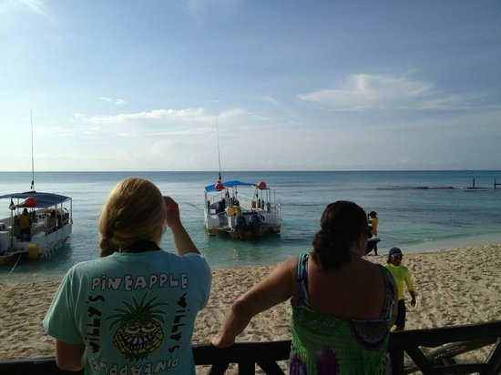 Dressel Divers: Dive boats before dive