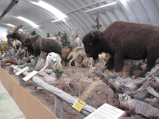 Riverton, WY: Wind river heritage center