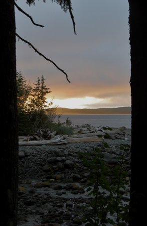 Wildcoast Adventures: View from the deck at Orca Camp's communal tent